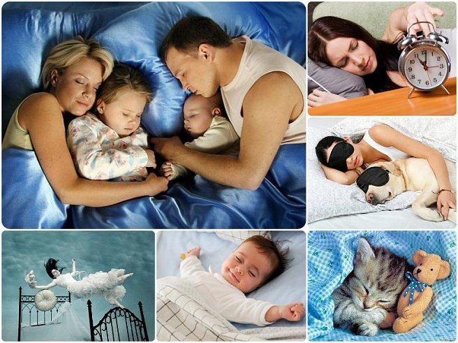 Какого числа всемирный день сна в 2018 году? - Интересное